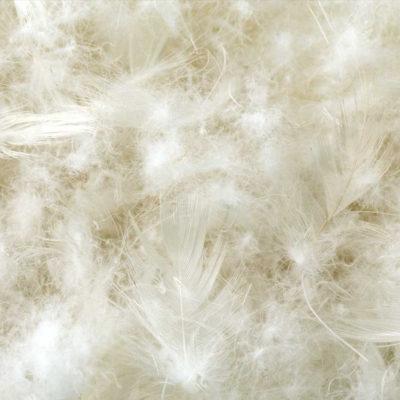 Malouf Z - Cotton Encased Down Blend